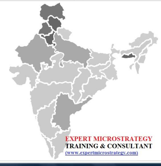 Pictures of Microstrategy image map widget