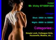 Delhi Escort Service with space at Saket 9718691233
