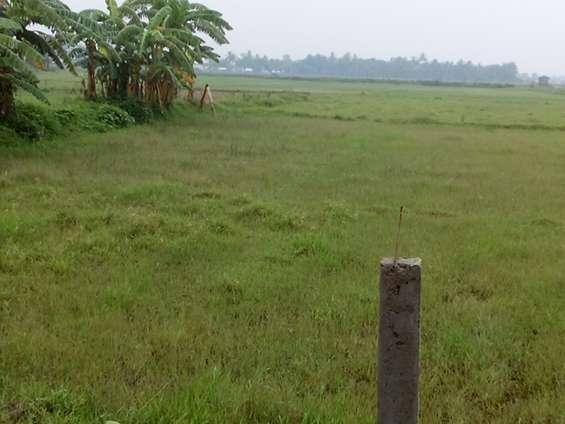 A profitable investment in land at kolkata