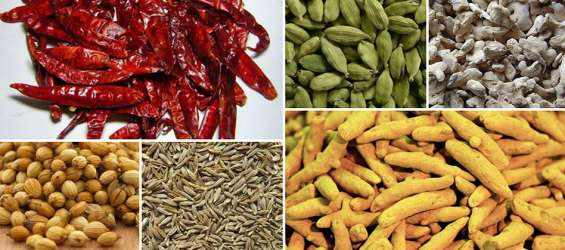 Look out for spices wholesaler - evergreen exports