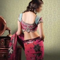 Vip escorts in delhi | delhi escorts-