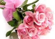Send Flowers to india|Buy online Flower ,Cake in India | Best Florist In india Gurgaon