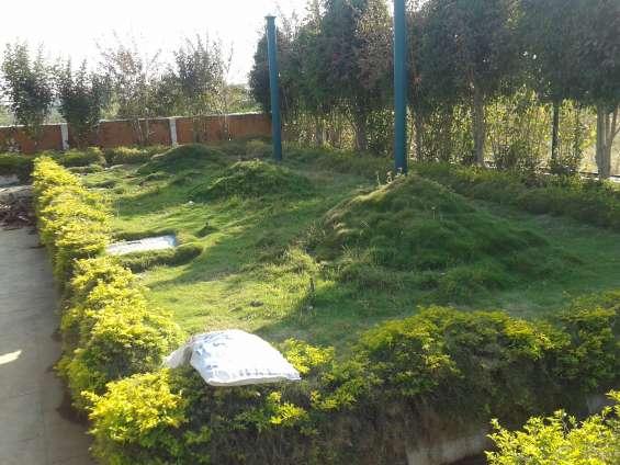 Contact 1500 sqft villa plots available at nbr meadows close to hosur. 08025722672