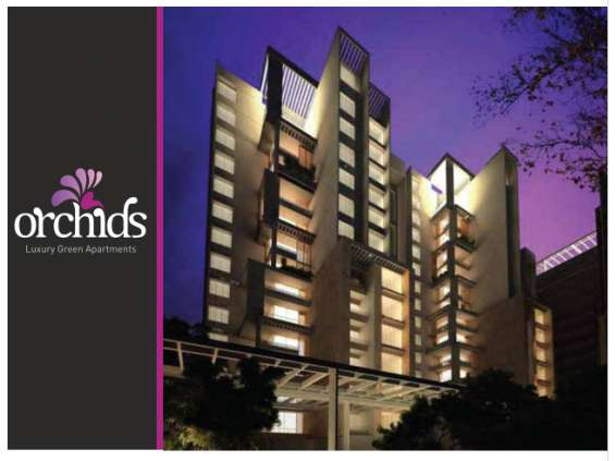 Orchids, premium apartments at tannisandra main road, bangalore, india