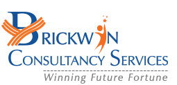 Brickwin - web development company and software services india