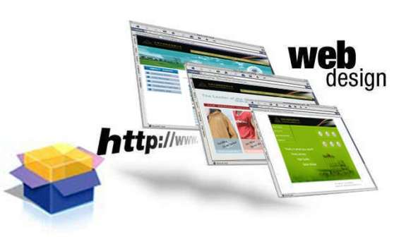 Professional website designing company in delhi, india