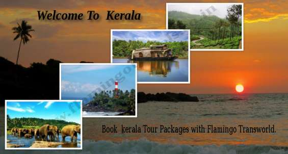 Book your kerala tour packages with flamingo transworld
