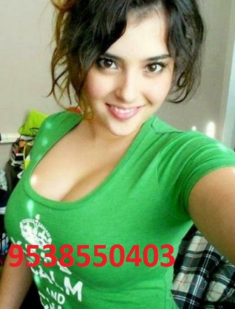 Electronic city indepented homely service dont miss