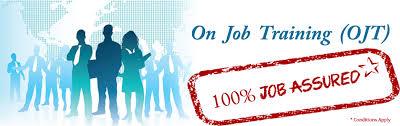 On job training for freshers on web designing/web development/mobile development