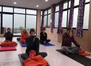 200 Hour Vinyasa Yoga Teacher Training course in Rishikesh India