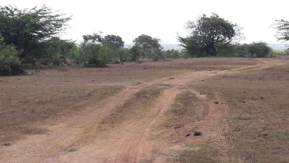 Green homes dtcp approved plot sriperumbudur near