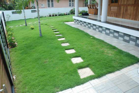 Realsight for landscape , plantscape and variety gardening trivandrum
