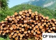 Natural wood veneer manufacturer in india