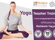 500 hour yoga teacher training course in rishikesh india