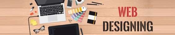 Web designing company in delhi | web development delhi