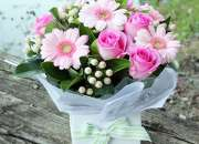 Bring Out the Memorable Moments by Sending FLowers to  hyderabad