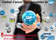 SAP Certification for a Great Career Path @ Coimbatore