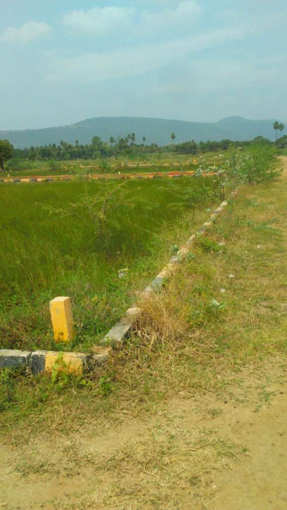 Very lowest price;-click here for land ;- near thirumohure