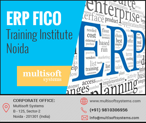 Erp fico training institute noida