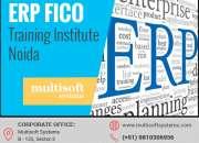 ERP FICO Training Institute Noida