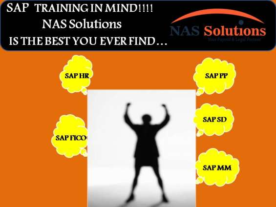 Sap training with 100% job assistance at nas solutions, lucknow #1 institute