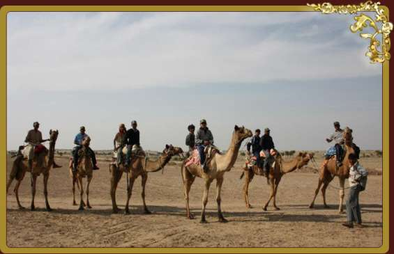 Excotic camel camps in rajasthan