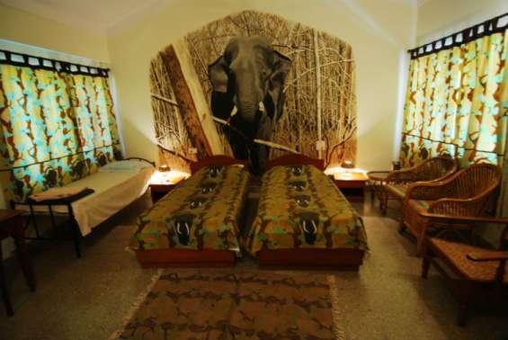 Pictures of Bandipur safari lodge - bandipur tiger reserve 2