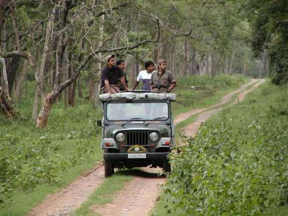 Pictures of Bandipur safari lodge - bandipur tiger reserve 5