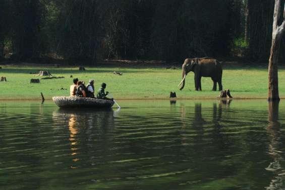 Pictures of Kabini river lodge - nagarahole national park 10