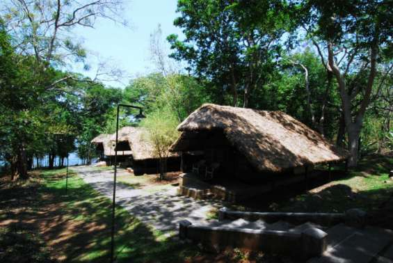 Pictures of Kabini river lodge - nagarahole national park 4