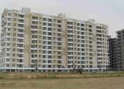 3 bhk flats in tdi wellington heights on 200 ft airport road in sec-117 in mohali