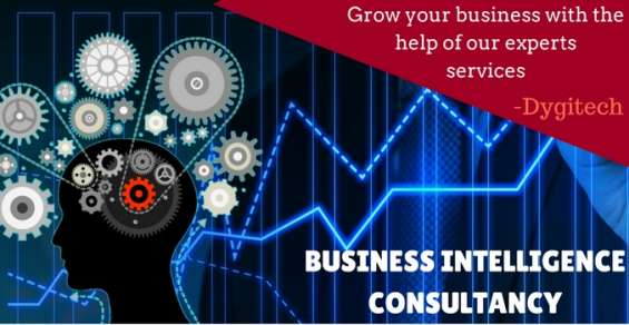 Business intelligence consultancy