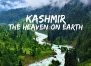 Kashmir special super saver beauty of nature