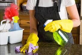 Housemaid services {since 1996}