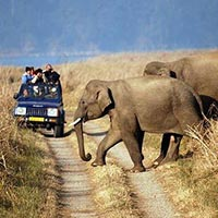 Jtspl tour packages with best price and best deals