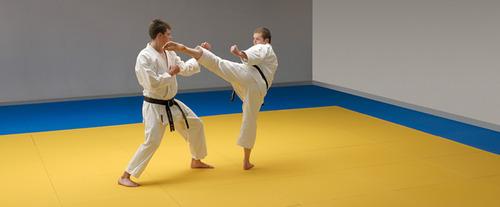 Online judo mats in delhi