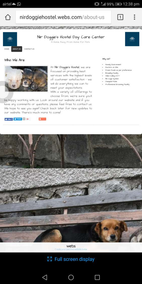 Website image 2