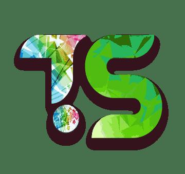 Techsilva services|project development team|cloud, data model