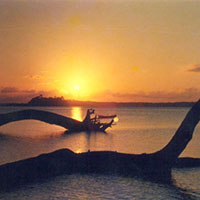 Port blair, havelock, neil tour packages