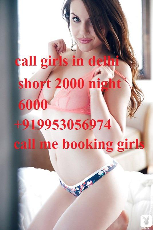 South ex- mehrauli -saket-malviya nagar-  -short 1500 night 6000 cheap