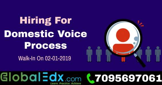 Walk-in drive domestic voice process, semi -voice process on 2nd january 2019