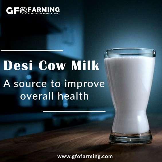 Farm fresh desi cow milk at your home