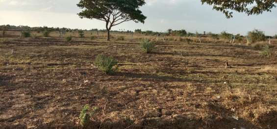 Pictures of Newly launched dtcp approved plots for sale at ponneri smart city 11