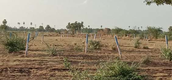 Pictures of Newly launched dtcp approved plots for sale at ponneri smart city 15