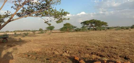 Pictures of Newly launched dtcp approved plots for sale at ponneri smart city 19