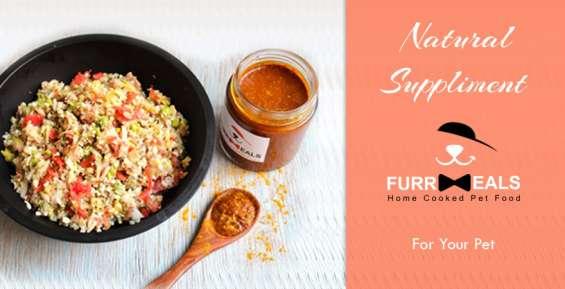 Fresh food supplier for dogs in delhi